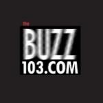 Logo da emissora Radio WIRK-HD2 103.1 FM