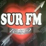 Logo da emissora Radio Sur 102.9 FM