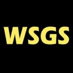 Logo da emissora Radio WSGS 101.1 FM