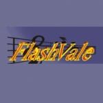 Logo da emissora Rede Flashvale de Rádio
