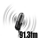 Logo da emissora WBNY 91.3 FM