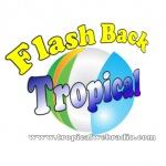 Logo da emissora Flash Back Tropical