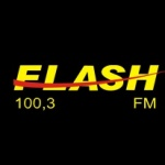 Logo da emissora Rádio  Flash 100.3 FM