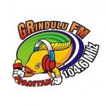 Logo da emissora Grindulu 104.6 FM