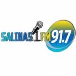 Logo da emissora Rádio Salinas FM
