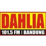 Logo da emissora Radio Dahlia 101.5 FM