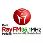Logo da emissora Radio Ray 95.1 FM