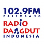 Logo da emissora RDI 102.9 FM