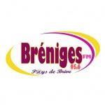 Logo da emissora Radio Breniges 95.6 FM