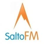 Logo da emissora Rádio Salto 89.9 FM