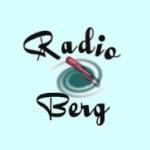 Logo da emissora Radio Berg 107.7 FM