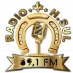 Logo da emissora Rádio H Sul FM 89.1