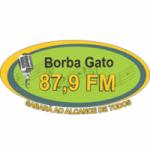 Logo da emissora Radio Borba Gato 87.9 FM