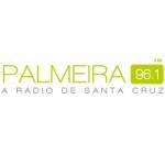 Logo da emissora Rádio Palmeira 96.1 FM