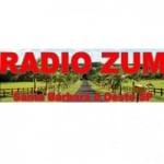 Logo da emissora Rádio Zumm