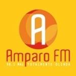 Logo da emissora Rádio Amparo 98.1 FM