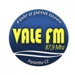 Logo da emissora Rádio Vale do Puiu 87.9 FM