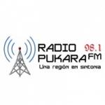 Logo da emissora Radio Pukara 98.1 FM