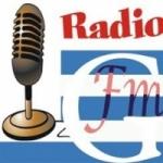 Logo da emissora Rádio FMG