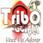 Logo da emissora Tribo Gospel FM