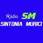 Logo da emissora Rádio Sintonia Murici