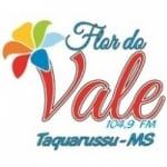Logo da emissora Rádio Flor do Vale 104.9 FM