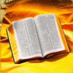Logo da emissora Rádio ADMP Gospel