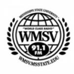 Logo da emissora WMSV 91.1 FM