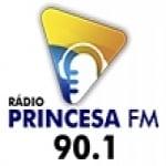 Logo da emissora Rádio Princesa do Norte 90.1 FM