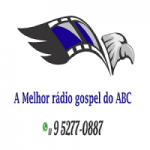 Logo da emissora Rádio se liga na visão