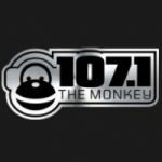 Logo da emissora WXYK 107.1 FM