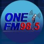 Logo da emissora Radio FM 98.5