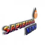 Logo da emissora Sapiranga News