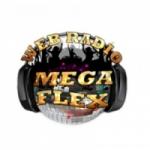 Logo da emissora Rádio Mega Flex