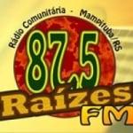 Logo da emissora Rádio Raízes 87.5 FM