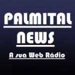 Logo da emissora Rádio Palmital news