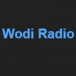 Logo da emissora WODI 1230 AM