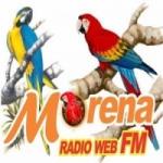 Logo da emissora Rádio Sul Morena