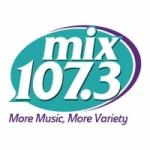 Logo da emissora Radio WRQX 107.3 FM