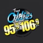 Logo da emissora Radio W295BJ 106.9 FM