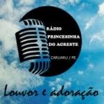 Logo da emissora Rádio Princesinha do Agreste