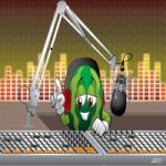 Logo da emissora Rádio Voz de Arari