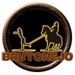 Logo da emissora Rádio Brutonejo