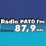 Logo da emissora Rádio Pato 87.9 FM