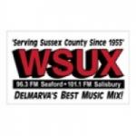 Logo da emissora Radio WSUX 101.1 FM