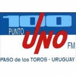Logo da emissora Radio Emisora Santa Isabel 100.1 FM