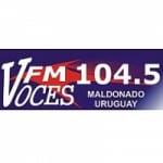Logo da emissora Radio FM Voces 104.5