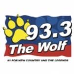 Logo da emissora WNHW 93.3 FM
