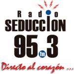 Logo da emissora Radio Seduccion 95.3 FM