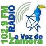 Logo da emissora Radio La Voz De Zamora 102.9 FM